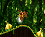 Donkey Kong : jungle ride